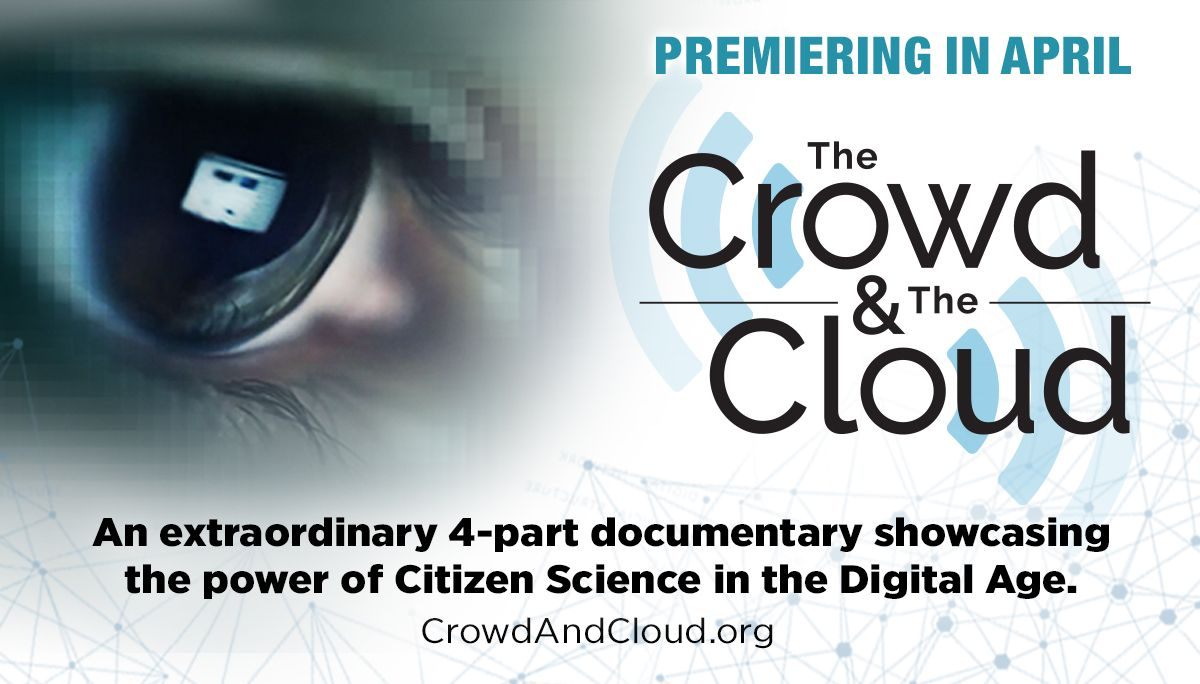 Here's all you need to know about The Crowd & The Cloud