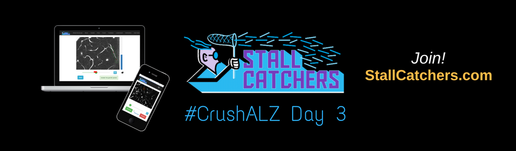 #CrushALZ Daily: Gamers & Middle Schoolers run the show on Day 3!