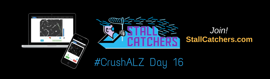 #CrushALZ Daily: Leaders change completely on Day 16!