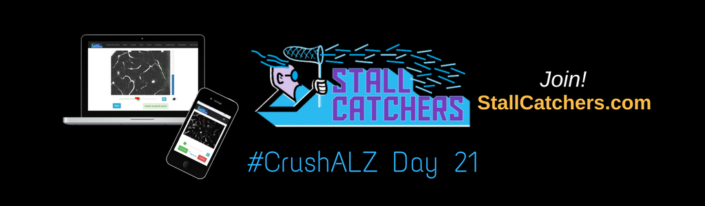 #CrushALZ Daily: Quick numbers of Day 21!