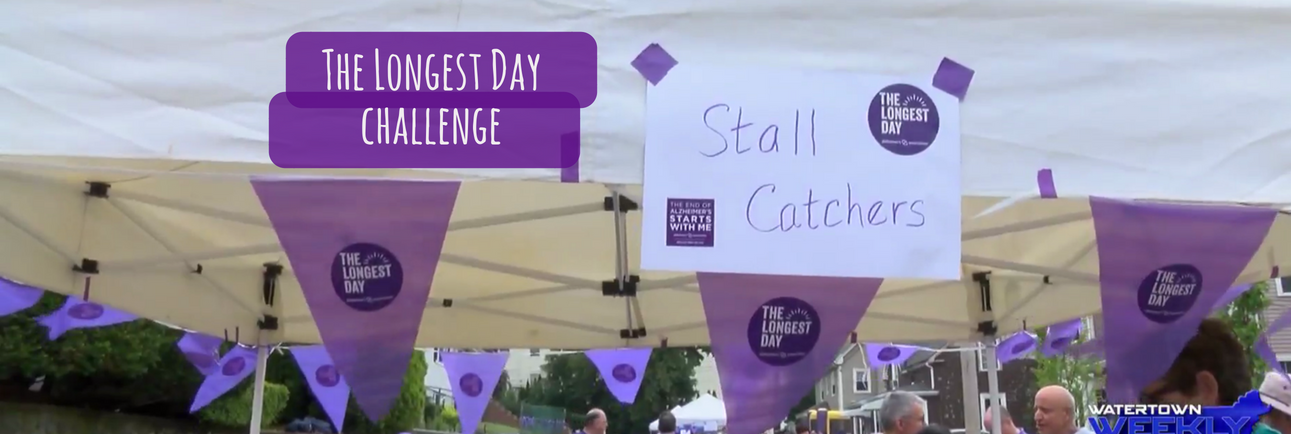 Play Stall Catchers on #TheLongestDay!