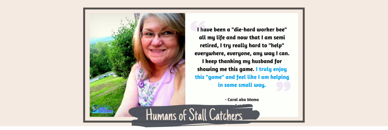 """If I can do this, anyone can, and we need all the help we can get!"" -- interview with supercatcher Carol aka Mema! 👩 🔬"