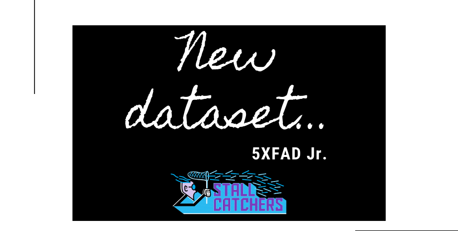 New dataset: 5XFAD Jr.