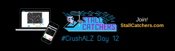 #CrushALZ Daily: Day 12 is through, and middle schoolers are back to #CrushALZ!