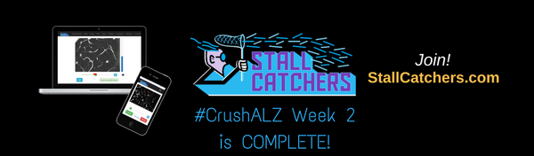 #CrushALZ Week 2 wrap up!