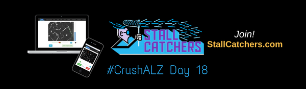 #CrushALZ Daily: Competition among daily leaders heating up on Day 18!
