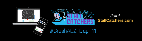 #CrushALZ Daily: Catchers bounce back after the weekend, Day 11!