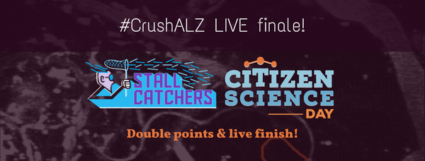 #CrushALZ Live finale & Double points on the last day!