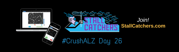 #CrushALZ Daily: Crushing faster than ever & all records broken AGAIN on Day 26