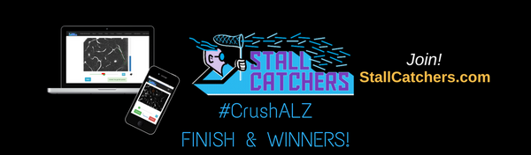 #CrushALZ is COMPLETE: final scores & winning teams!