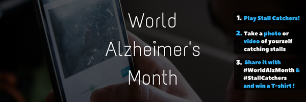 Catch stalls for World Alzheimer's Month (and win!)