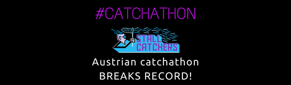 Austrian catchathon breaks record! (guest post)