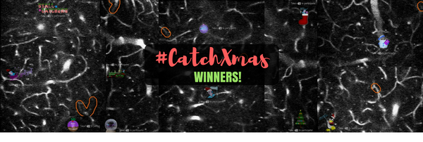 Who managed to #CatchXmas? Winners announced!