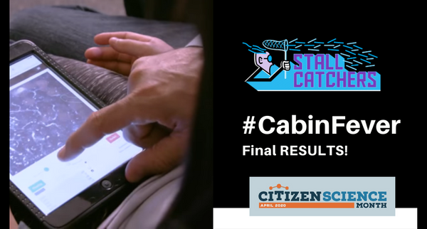 Final results of the #CabinFever challege!